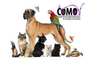 Especialistas do Brasil e do mundo debatem a incidência do câncer em animais no COMOV